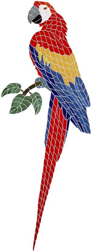 Macaw Pool Mosaics