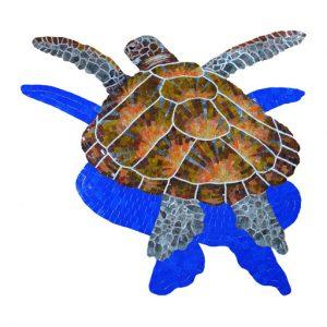 Loggerhead Turtle with shadow large