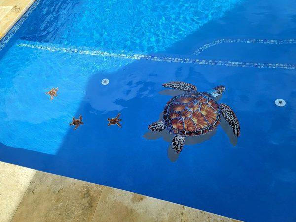 Baby Turtle Pool Mosaics