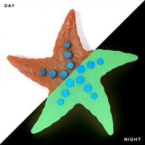 Glow in the Dark Bubbly Starfish Pool Mosaics