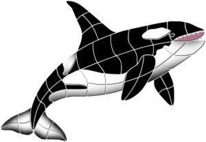Orca 2 Pool Mosaics