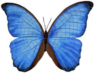 Electric Blue Butterfly Pool Mosaics