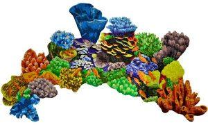 Glass Coral Reef Pool Mosaics