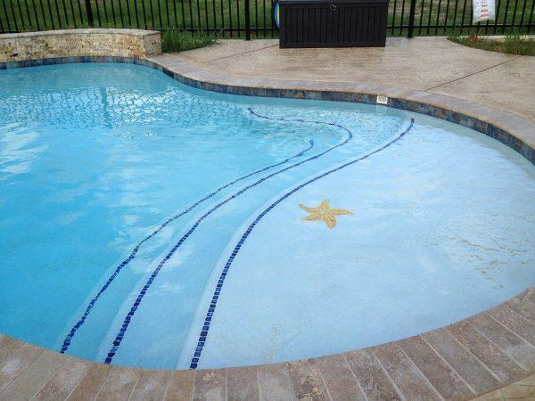 Large Starfish Pool Mosaics