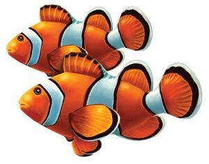 Clown Fish (Double) Pool Mosaics