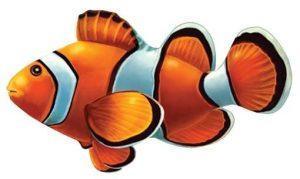 Clown Fish Pool Mosaics