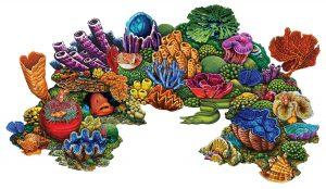 Coral Reef A Pool Mosaics