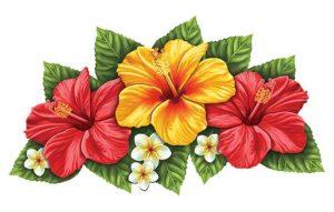 Triple Hibiscus Flower Pool Mosaics