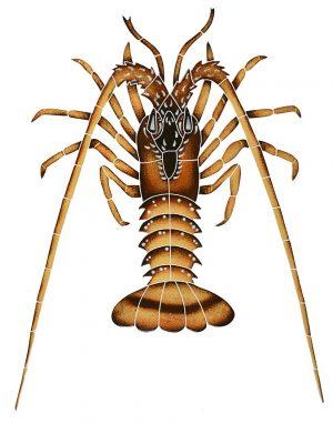 Spiny Lobster Pool Mosaics