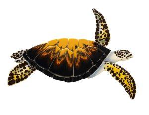 Loggerhead Turtle Pool Mosaics