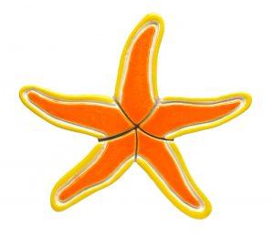 Starfish Pool Mosaics