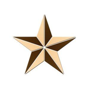 Texas Star Pool Mosaics