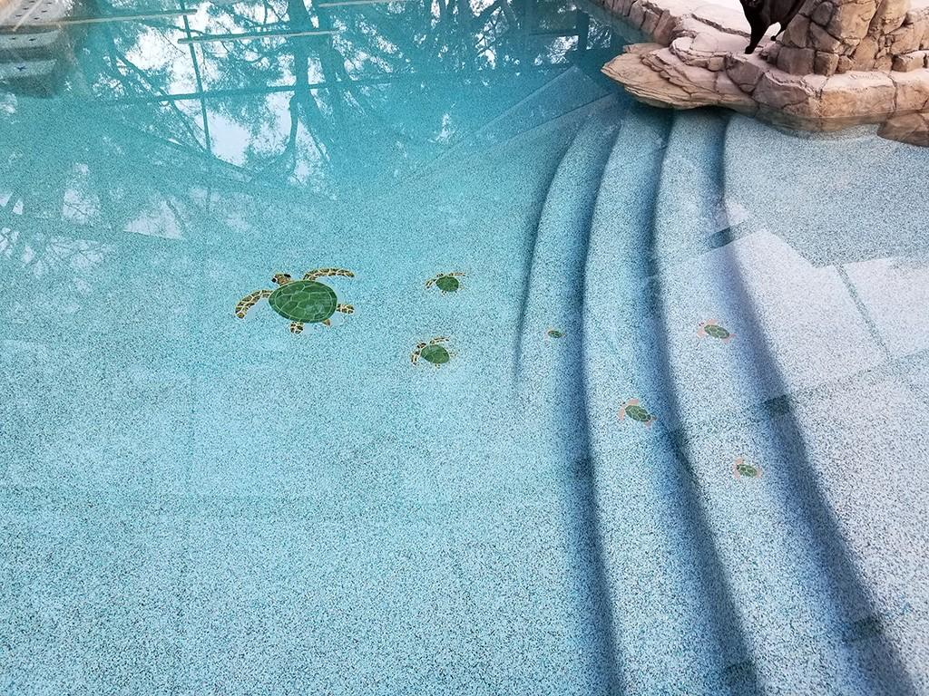 Turtle 1 Group Pool Mosaics