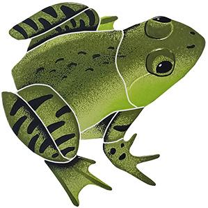Bull Frog Pool Mosaics