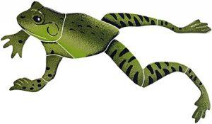 Leaping Frog Pool Mosaics