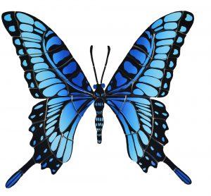 Butterfly Ghattas Boulder 2251 16x18 1